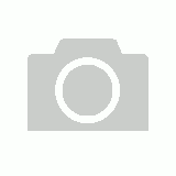 Beads Wooden 12mm 100's Assorted