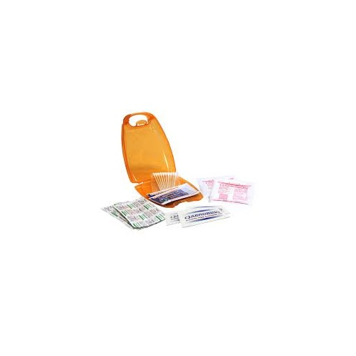 Companion First Aid Kit